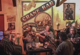 traditiona-irish-music-at-crane-bar